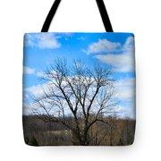 Joshua Tree Country Style Tote Bag
