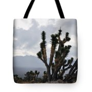 Joshua Tree Forest Ivanpah Valley Tote Bag