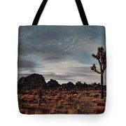 Joshua Tree Hidden Valley Panorama Tote Bag