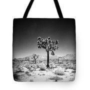 Joshua Tree Holga 1 Tote Bag