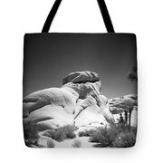 Joshua Tree Holga 6 Tote Bag