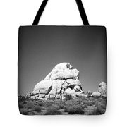 Joshua Tree Holga 9 Tote Bag