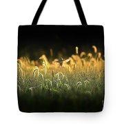 Joy Of Summer - Version 2 Tote Bag