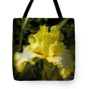 Joy Of Sunshine Tote Bag