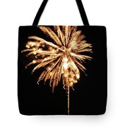 July Fourth 2012 P Tote Bag