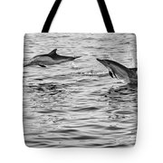 Jump For Joy - Common Dolphins Leaping. Tote Bag