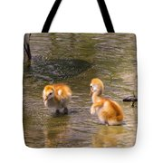 Jump In. The Water Is Fine Tote Bag