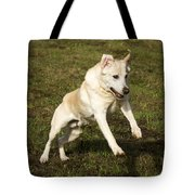 Jumping Into The Game Tote Bag