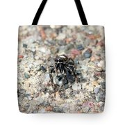 Jumping Spider Face On Tote Bag