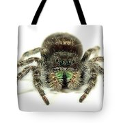 Jumping Spider Tote Bag
