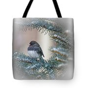 Junco In Pine Tote Bag