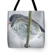 Junco On A Twig Tote Bag