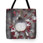 Junco Puffed Up On Crabapple Tree Tote Bag