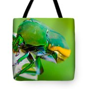 June Bug Fig Beetle Tote Bag