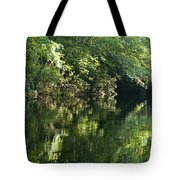 June Morning On The Pawcatuck Tote Bag