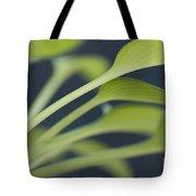 June Plantain Lily Close Ups Tote Bag