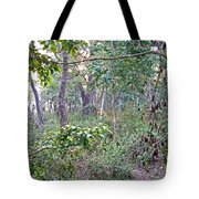 Jungle Forest In Chitwan Np-nepal Tote Bag