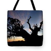 Juniper Tree, Canyonlands National Park Tote Bag