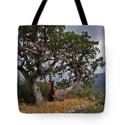 Juniper Tree On The Edge Of The Verde Valley Tote Bag