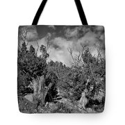 Juniper Trees At The Ghost Ranch Black And White Tote Bag