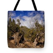 Juniper Trees At The Ghost Ranch Color Tote Bag