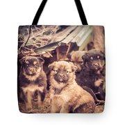 Junkyard Dogs Tote Bag
