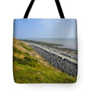 Jurassic Coast Tote Bag