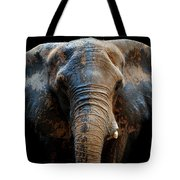 Just A Day At The Spa Tote Bag