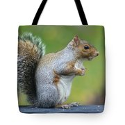 Just An Observation Tote Bag