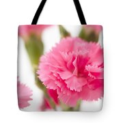 Just Carnations Tote Bag