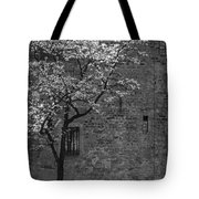 Just For A Walk Tote Bag