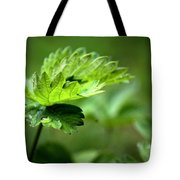 Just Green Tote Bag by Jeremy Hayden
