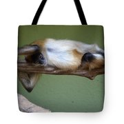 Just Hanging About Tote Bag