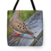 Just Hanging Around Tote Bag