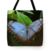 Just Hanging On Tote Bag