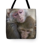 Just Hold Me Now Tote Bag