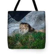 Just Lion Around Tote Bag