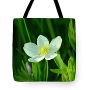 Just One Pretty Flower Tote Bag
