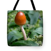 Just One Toadstool Tote Bag