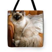 Just Sitting Tote Bag