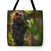 Just Waking Up Tote Bag