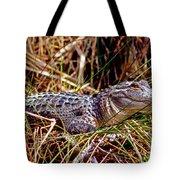 Juvenile American Alligator Tote Bag