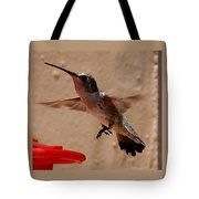 Juvenile Broadtale Anna Hummingbird Landing On The Perch Tote Bag