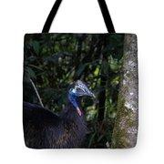Juvenile Cassowary Tote Bag