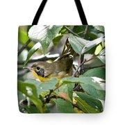 Juvenile Common Yellowthroat Tote Bag