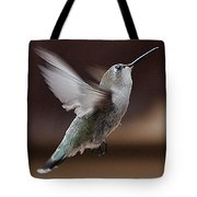 Juvenile Female Anna's Hummingbird In Flight Tote Bag