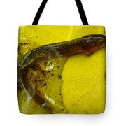 Juvenile Salamander Tote Bag