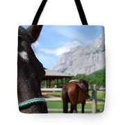 K Country Tote Bag