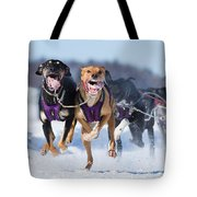 K9 Athletes Tote Bag by Mircea Costina Photography