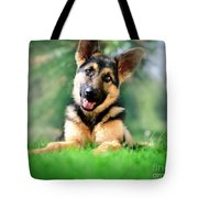 K9 Cute Tote Bag